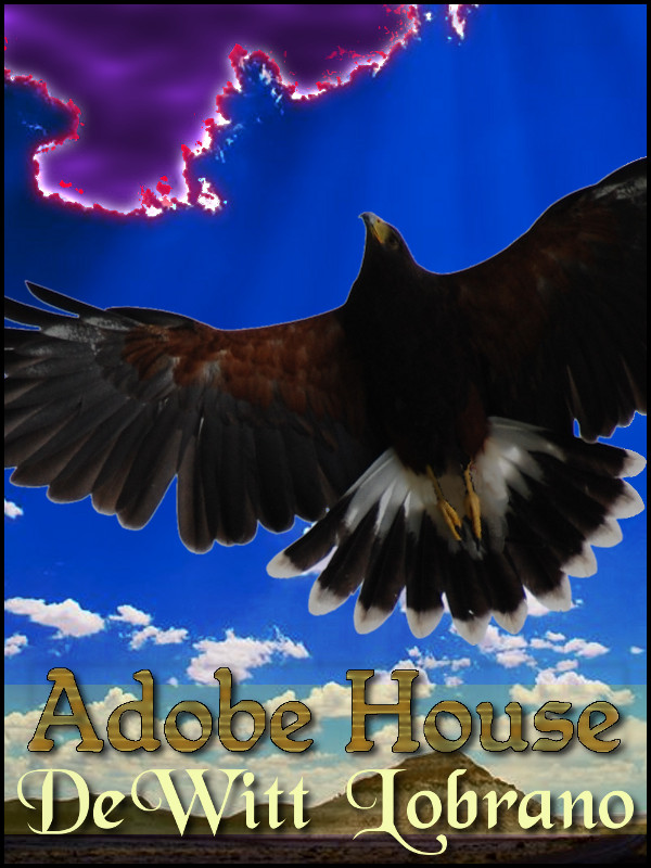 Cover of The Adobe House