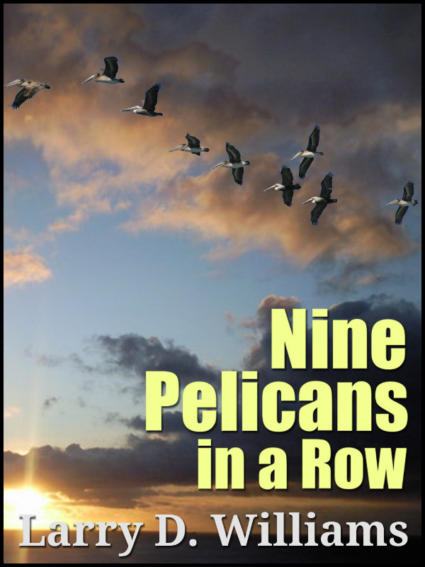 Cover of Nine Pelicans in a Row