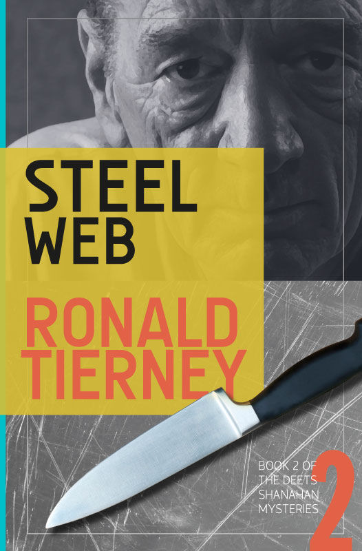Cover of Steel Web