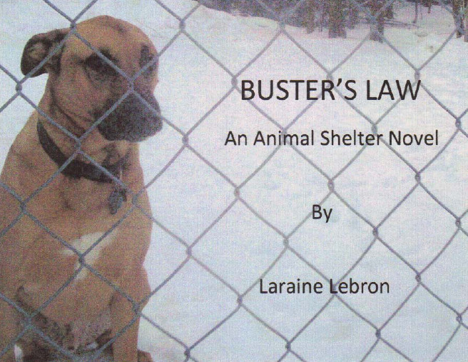 Cover of Buster's Law