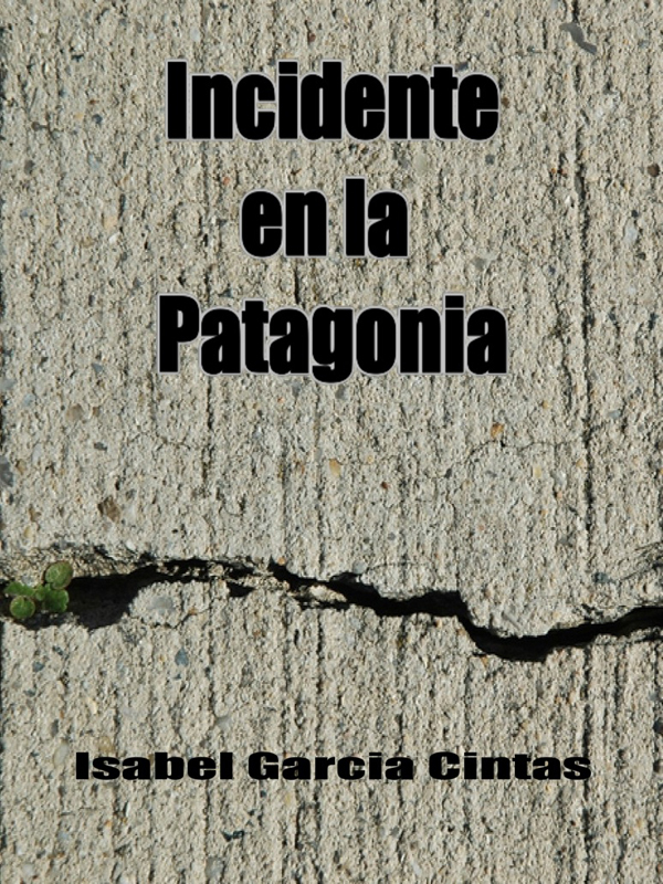 Cover of Incidente en la Patagonia