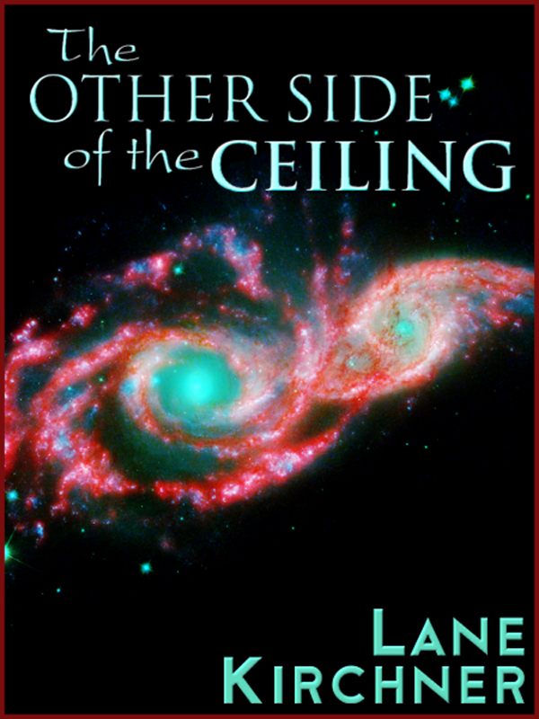 Cover of The Other Side of the Ceiling