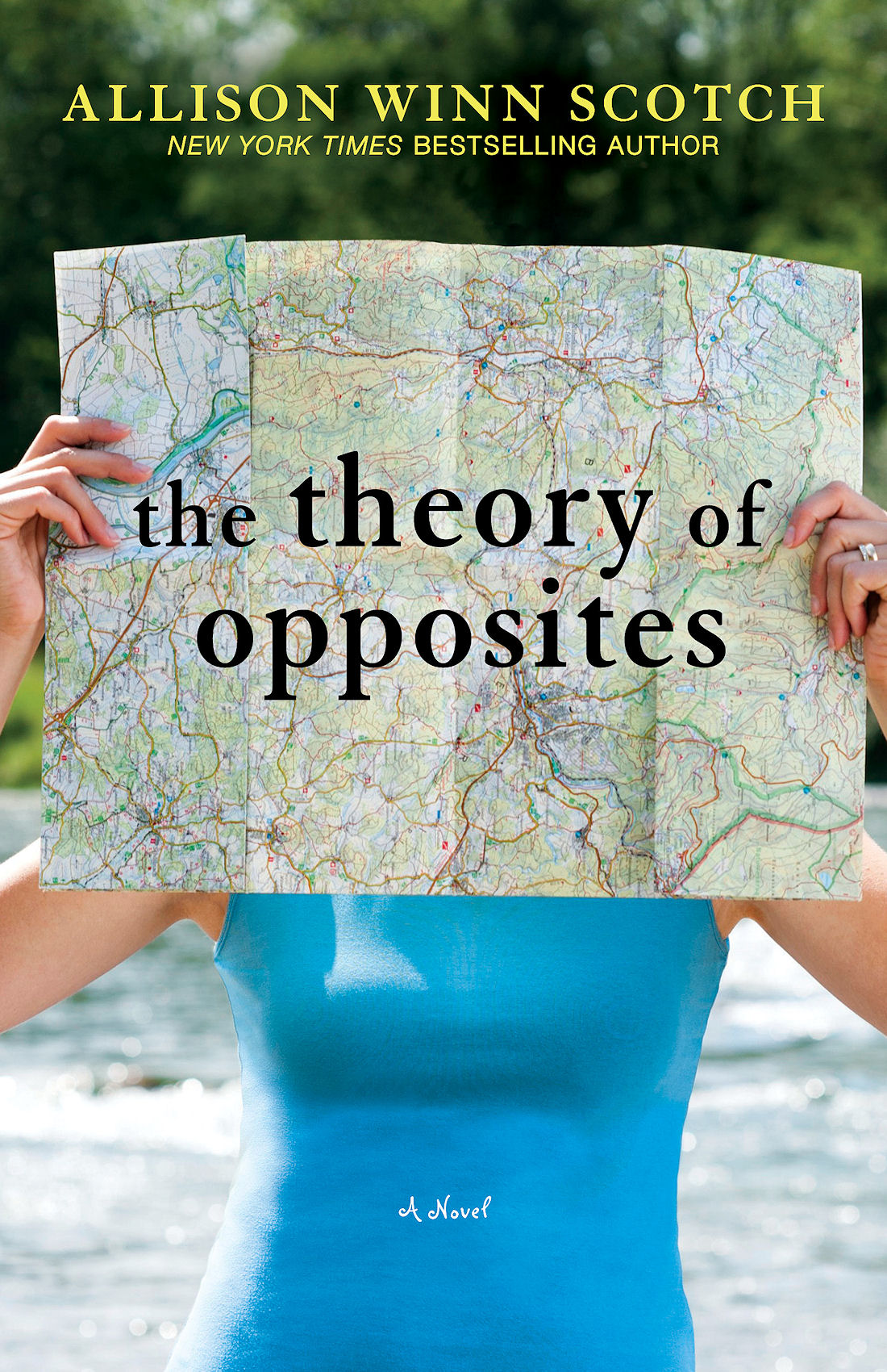 Cover of Theory of Opposites
